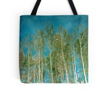 Beautiful summer in the forest. Reflection of birch in a lake Tote Bag