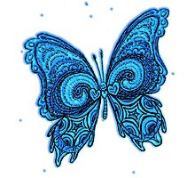 Blue Psy GOA Butterfly Photographic Print