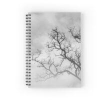 Winter Veins - Winter Series Spiral Notebook