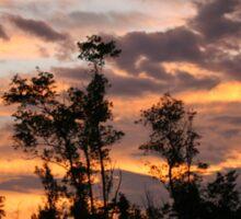 Sunset at El Arish, Far North Queensland Sticker