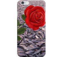 Fryst Sill Header iPhone Case/Skin