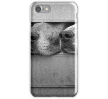 Four foxhounds looking out of trailer iPhone Case/Skin