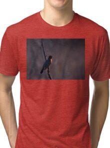 Signs of Spring - Robin Tri-blend T-Shirt