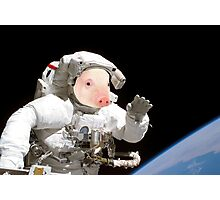 Space pig Photographic Print