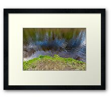 Lake Waters Edge Connecticut Framed Print