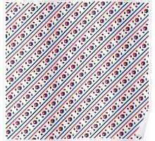 North & South Korean flags mixed beautiful pattern art Poster