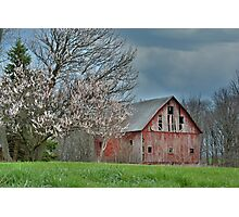 Indiana Spring Photographic Print