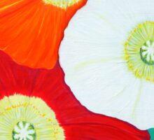 Three Poppies Sticker