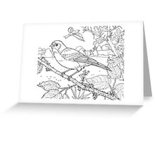 Chaffinch Black on White Greeting Card