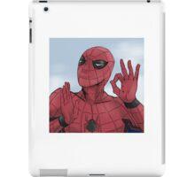 Spider-man On Point iPad Case/Skin