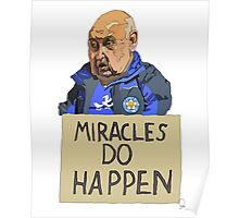 MIRACLES DO HAPPEN  Poster