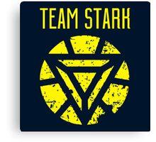 team stark logo Canvas Print