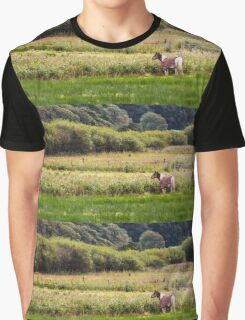 Horse in Field Graphic T-Shirt