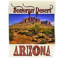 Sonoran Desert - Arizona Poster