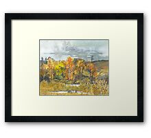 autumn 300 Framed Print