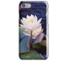 Longwood Gardens - Spring Series 29 iPhone Case/Skin