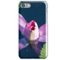 Longwood Gardens - Spring Series 28 iPhone Case/Skin
