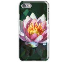 Longwood Gardens - Spring Series 27 iPhone Case/Skin