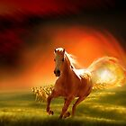 Gallop Through The Sun by Igor Zenin