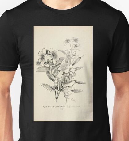 Southern wild flowers and trees together with shrubs vines Alice Lounsberry 1901 109 Saint John's Wort Unisex T-Shirt