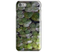 Longwood Gardens - Spring Series 24 iPhone Case/Skin