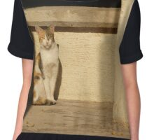 Stray Cat Chiffon Top