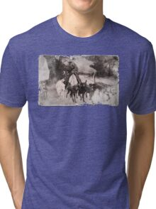 Wolfman Dog Walker (1) Tri-blend T-Shirt