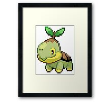 Pokemon - Turtwig Framed Print