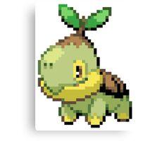 Pokemon - Turtwig Canvas Print