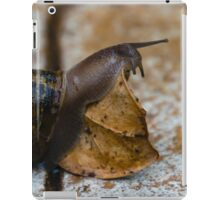 Obstacle or Challenge iPad Case/Skin