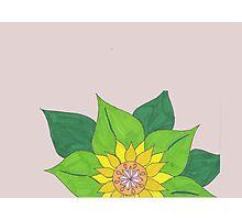 Sunny sunflower Photographic Print
