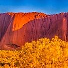 Uluru & Olgas by Mark Bilham