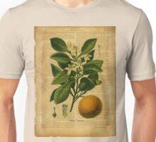 Botanical print, on old book page - orange Unisex T-Shirt
