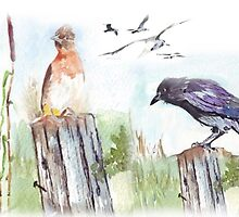 Coco and a bulbul by Maree Clarkson