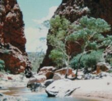 Alice Springs Sticker