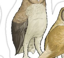 Giant barn owls from various islands Sticker