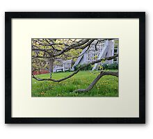 Branches and Bench Framed Print