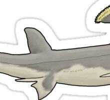 A weird shark from a weirder past, Stethacanthus Sticker
