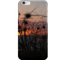 sunset grass iPhone Case/Skin