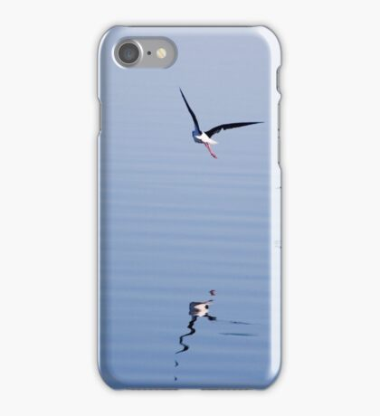 Black-winged Stilts flying over water  iPhone Case/Skin
