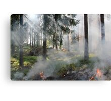 styggkarret reserve burning fire Canvas Print