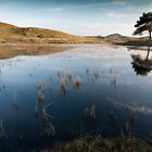 Kelly Hall Tarn Reflections by RedGrouse