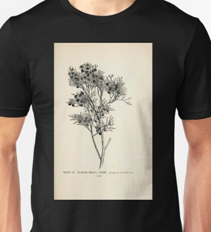 Southern wild flowers and trees together with shrubs vines Alice Lounsberry 1901 008 Florida Pencil Cedar Unisex T-Shirt
