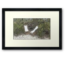 Countryside holidays Framed Print