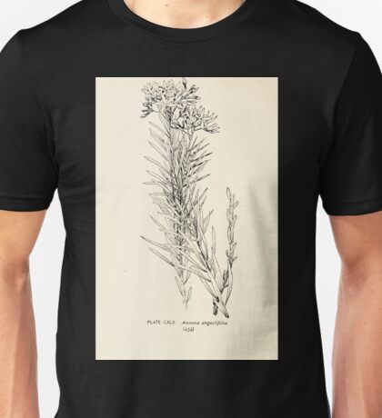 Southern wild flowers and trees together with shrubs vines Alice Lounsberry 1901 144 Amsonia Angustifolia Unisex T-Shirt