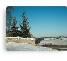 frosty winter day in the village  Canvas Print