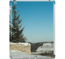 frosty winter day in the village  iPad Case/Skin
