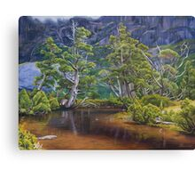 Artist's Pool Canvas Print