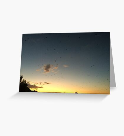 Flight - Dusk Collection Greeting Card