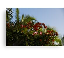 Palm Trees and Tropical Flowers Canvas Print